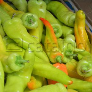 Food 004 – Paprika - Whomp.de