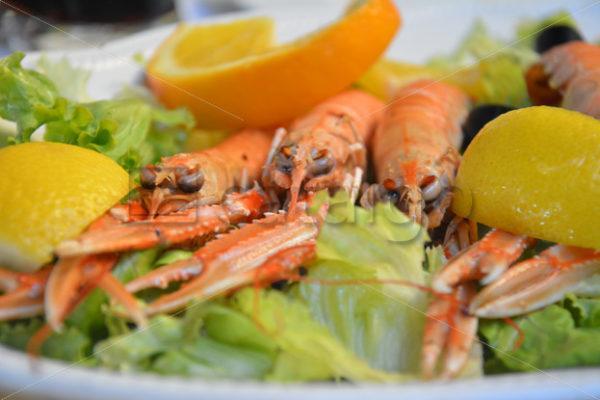 Food 021 – Mediterran - Whomp.de